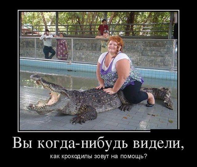 Смешные и умные демотиваторы. 498 ( 30 фото )