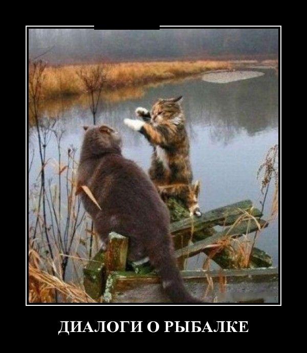 Смешные и умные демотиваторы. 495 ( 30 фото )