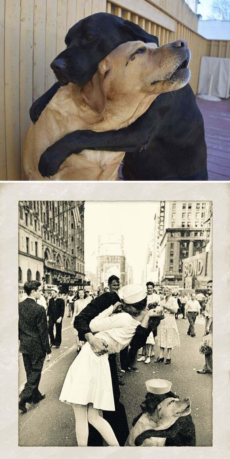Фотобомбы смешные, новые. часть 26 ( 102 фото )