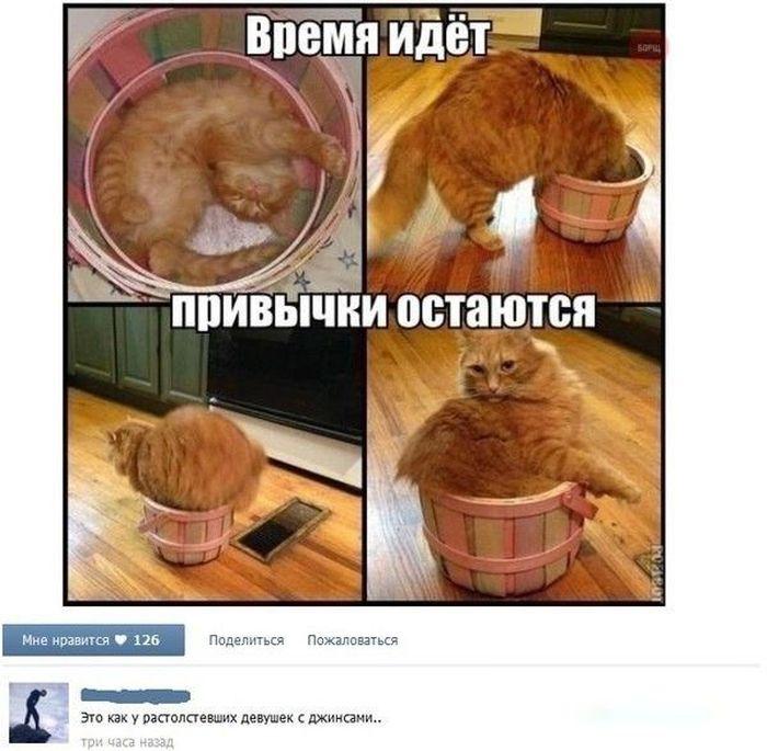 http://ww.zapilili.ru/pic/1/1/3/1/2/prikolnie_kartinki_168.jpg
