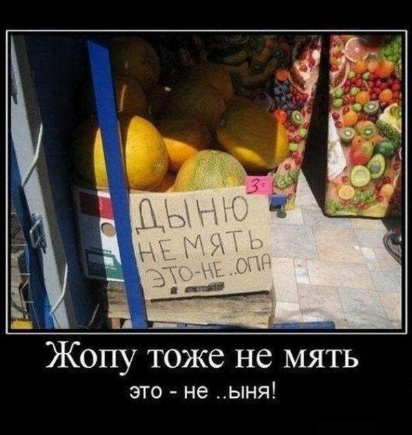 Смешные и позитивные демотиваторы (30 фото)