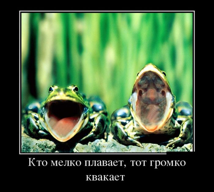 Смешные и умные демотиваторы. 486 ( 30 фото )