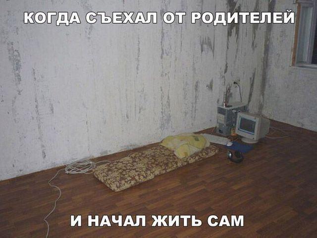 Забавные иллюстрации с текстом (20 фото)