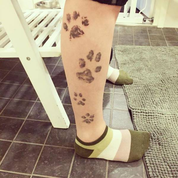 Татуировка с лапой пса (39 фото)