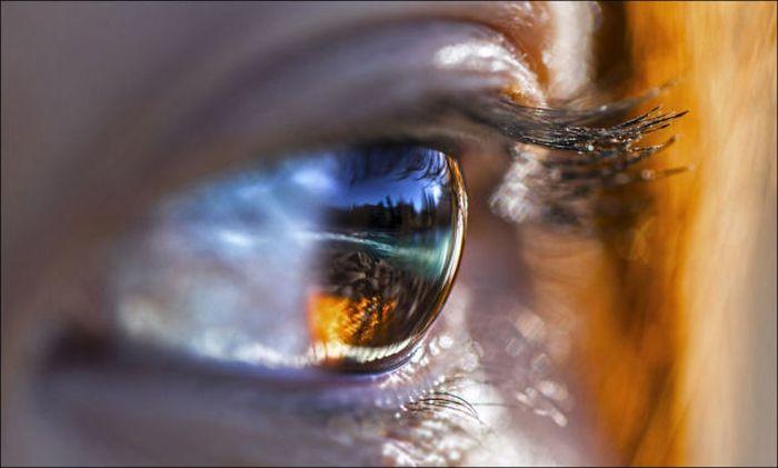 Удивительные снимки от National Geographic (32 фото)