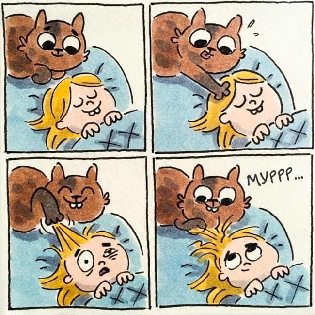 Забавные и истинные комиксы о жизни с котом (15 иллюстраций)