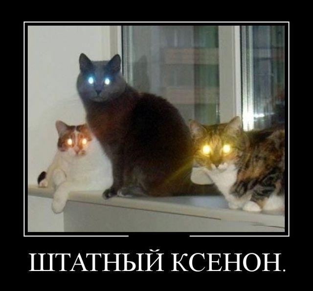 Смешные и умные демотиваторы. 501 ( 30 фото )
