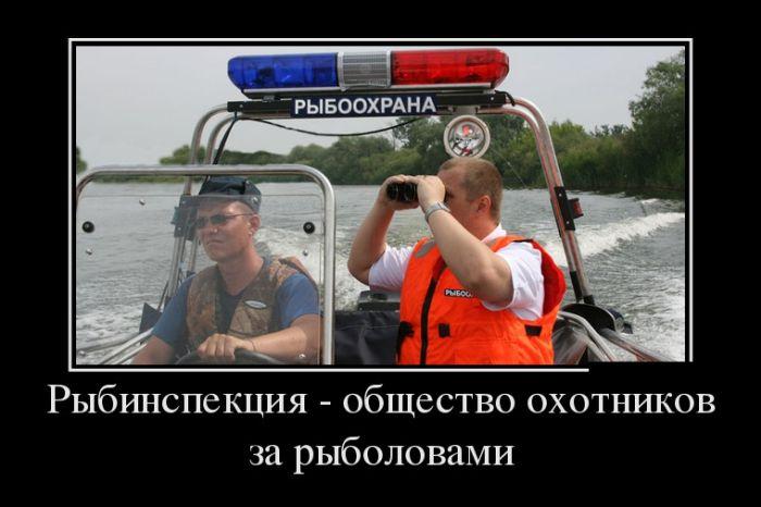 Демотиваторы весёлые и нарядные) (30 фото)
