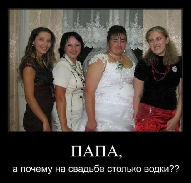Смешные и умные демотиваторы. 454 ( 30 фото )