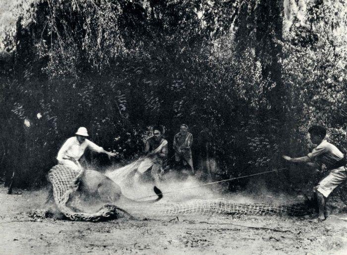 Подборка редких фотографий со всего мира. часть 15 ( 90 фото)