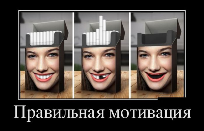 Смешные и умные демотиваторы. 457 ( 30 фото )
