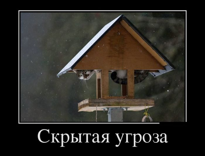 Смешные и умные демотиваторы. 467 (30 фото)