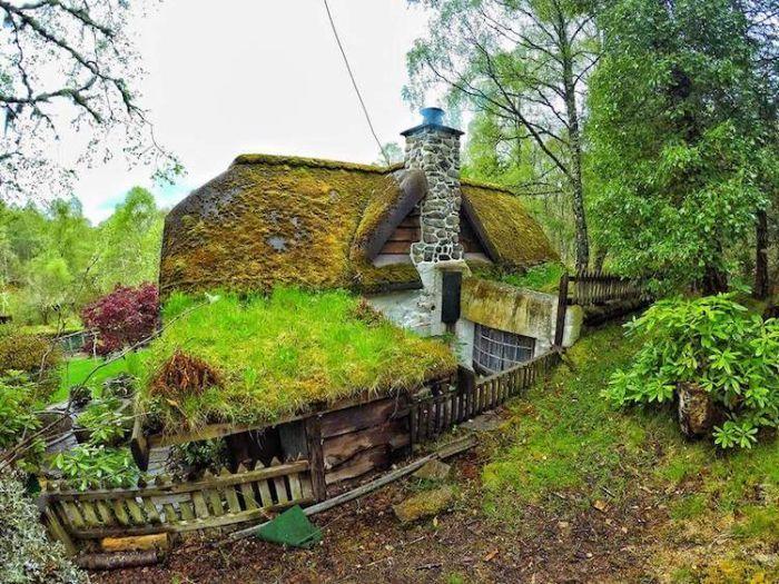 Жилище Хоббита в Шотландии (18 фото)