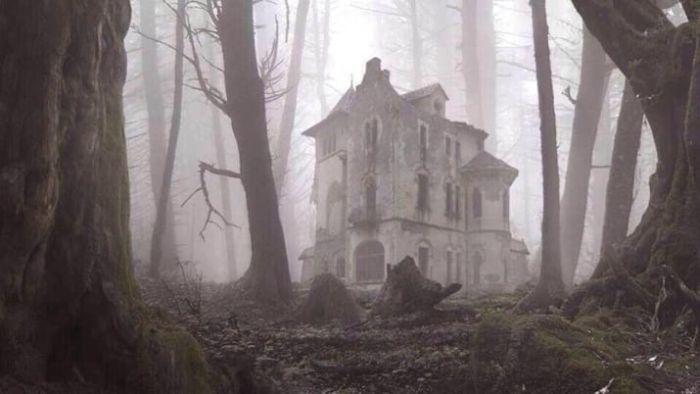 Зловещие снимки, произведенные посреди леса (13 фото)