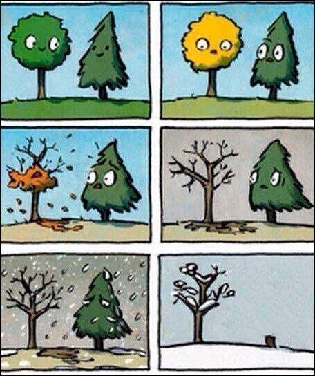 комиксы и карикатуры тщательно отобранные по юмору.