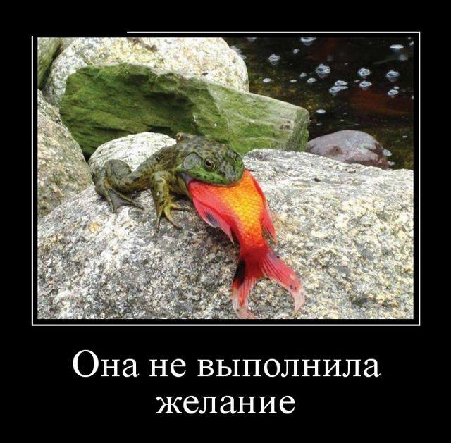 Смешные и умные демотиваторы. 522 ( 30 фото )