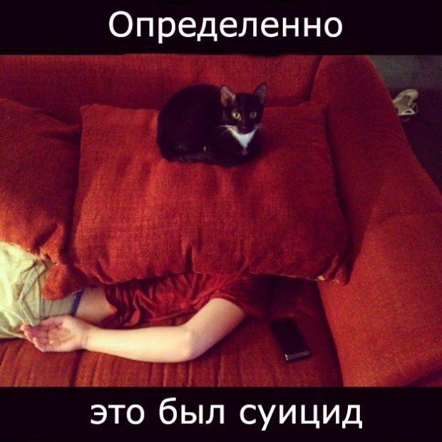 Самые, новые, смешные картинки. ( 20 фото )