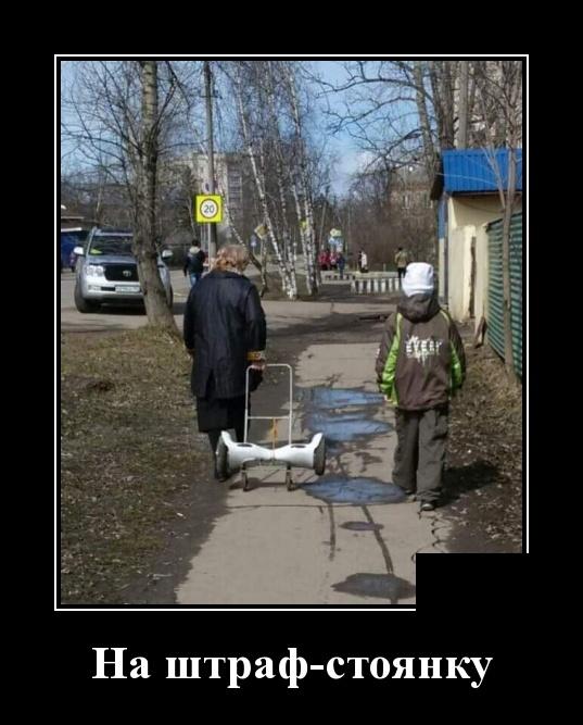 Смешные и умные демотиваторы. 536 ( 30 фото )