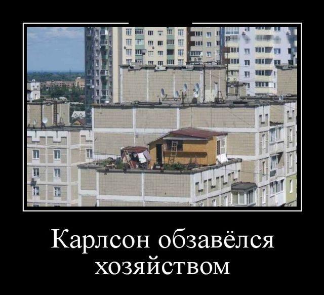 Смешные и умные демотиваторы. 531 ( 30 фото )