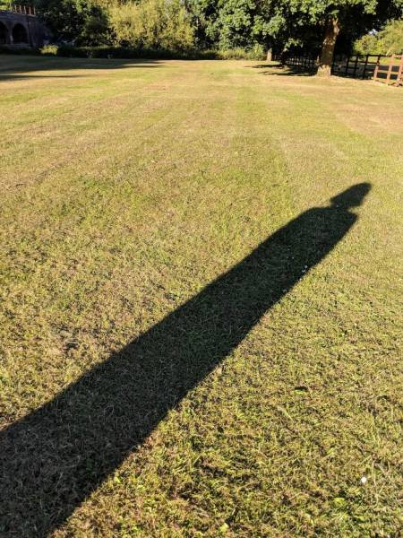 Пристально приглядитесь к данным теням (48 снимков)