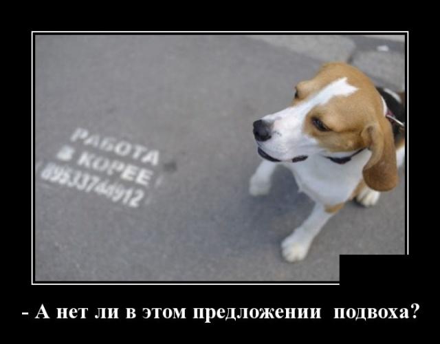 Смешные и умные демотиваторы. 540 ( 30 фото )
