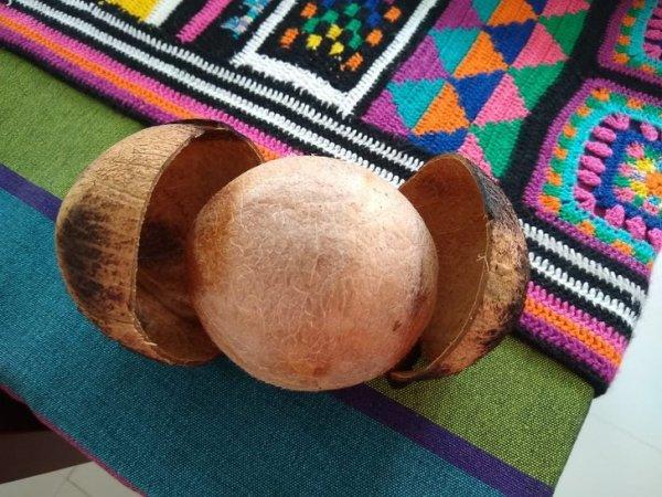 Идеально почищенный кокос