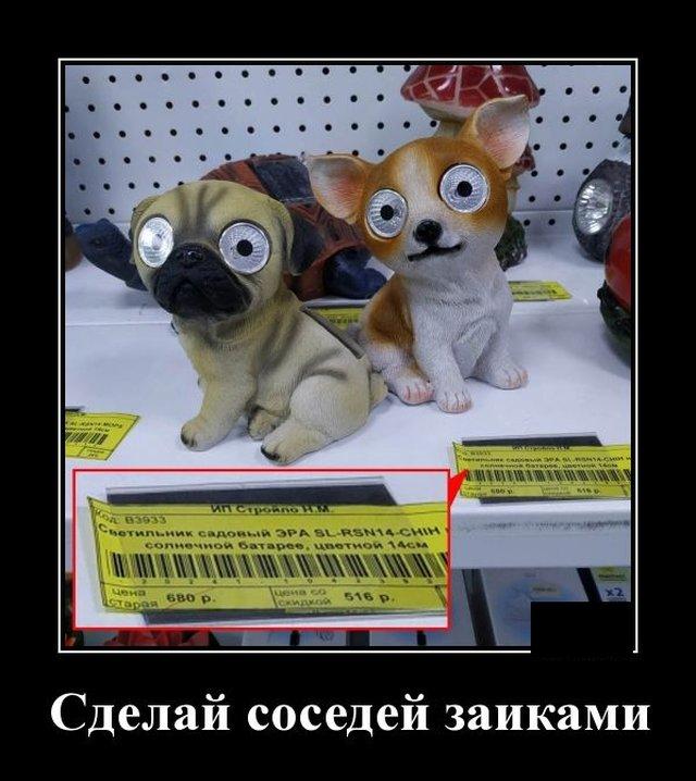Умные и забавные демотиваторы 604 ( 20 фото )