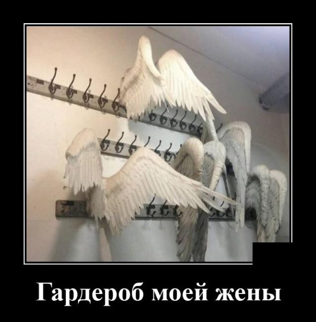 Умные и забавные демотиваторы 618 ( 20 фото )