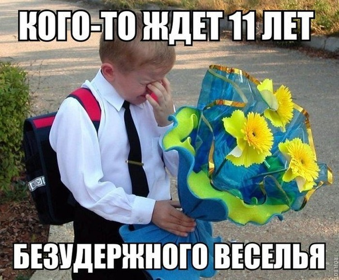 Прикольные картинки (102 фото)