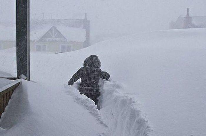 Фотоотчет из заснеженного Ростова-на-Дону (34 фото)