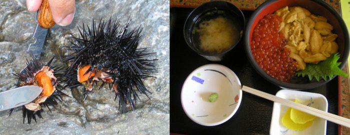 Ужасающие деликатесы из Японии (21 фото)