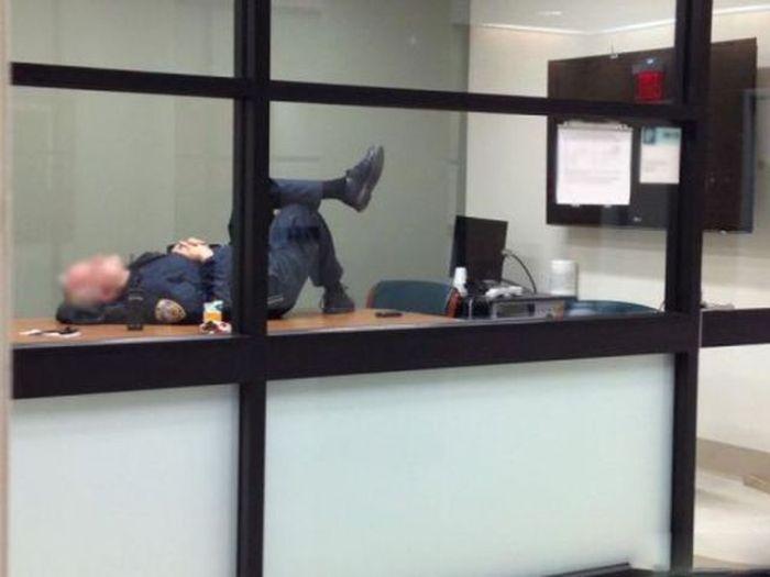 Приколы на рабочем месте.