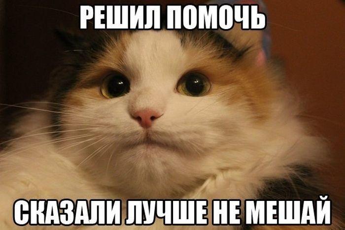 Подборочка для хорошего настроя)