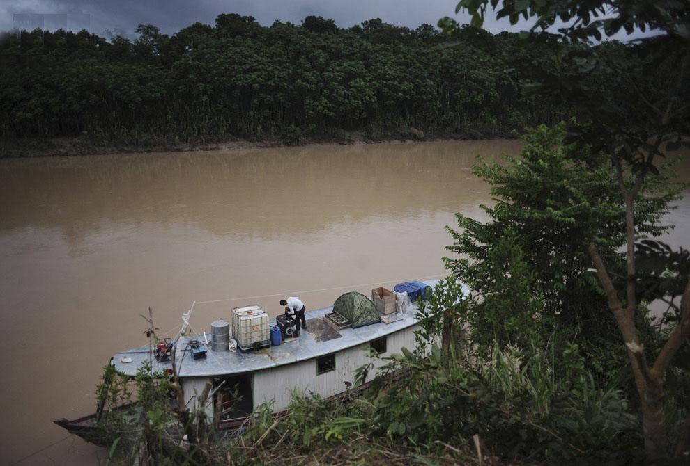 Выживание в Amazon