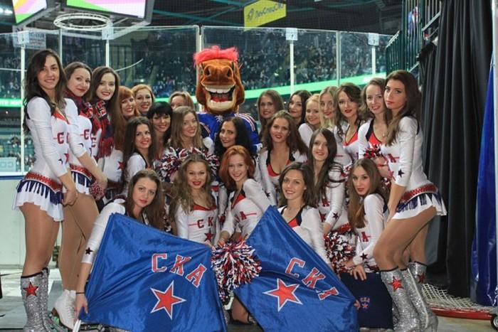 Девушки из КХЛ команда поддержки (46 фото)