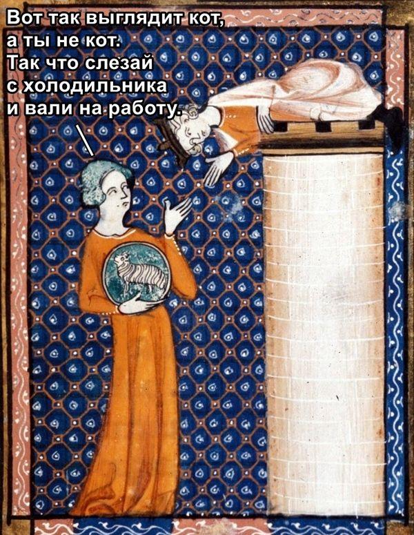 Средневековье в смешных картинках (35 картинок)