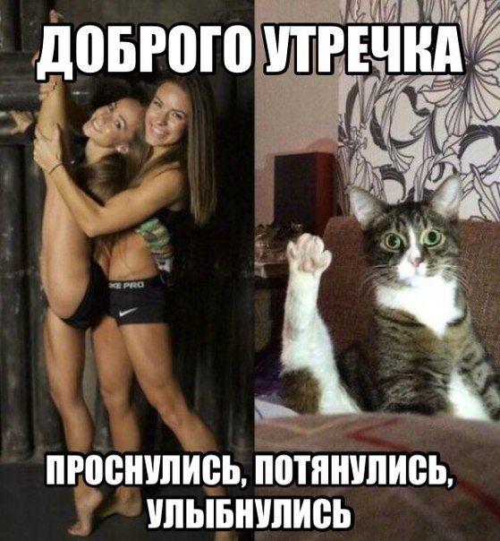 Прикольные и смешные картинки.