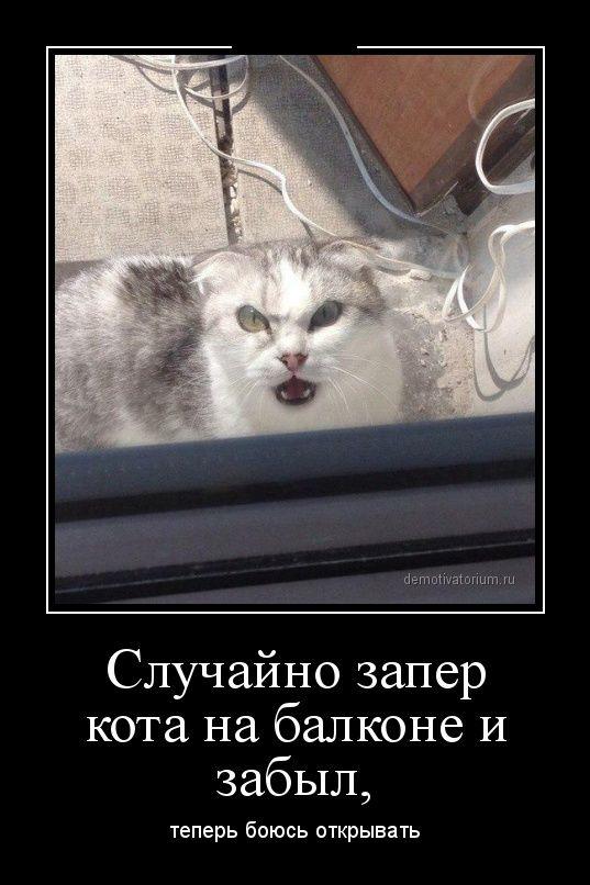 http://ww.zapilili.ru/pic/1/6/8/3/prikolnie_demotivatori_84.jpg