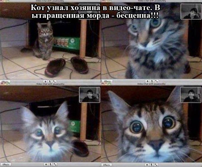 http://ww.zapilili.ru/pic/1/7/1/podborka_03.jpg