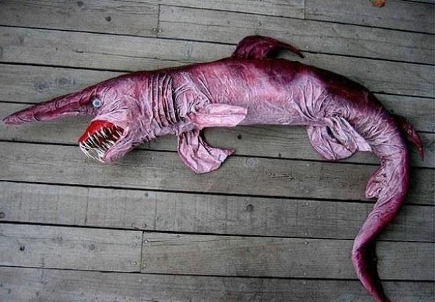 Необычная акула
