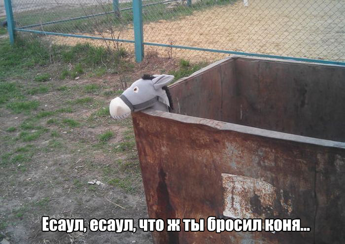 Прикольные, забавные, новые картинки на запилили.рф