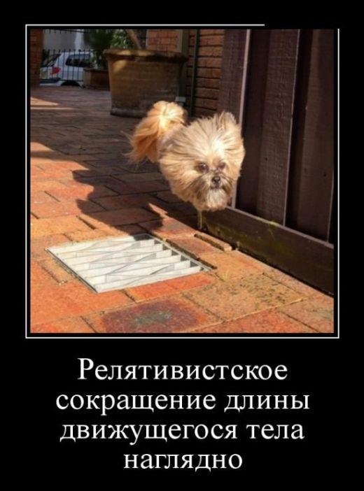 Смешные и умные демотиваторы. 533 ( 30 фото )